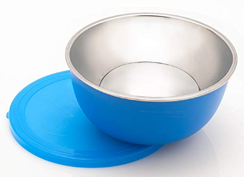 Signoraware Classic Microwave Safe Steel Bowl 500ml, Blue