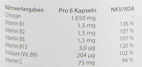 dr.reinwald ChitoCLEAN fungus – Austernpilz-Chitosan-Ballaststoff – Bessere Stoffwechselverfügbarkeit & Bindung von unerwünschten Stoffen – Folat, Vitamin-B-Komplex & Vitamin C –