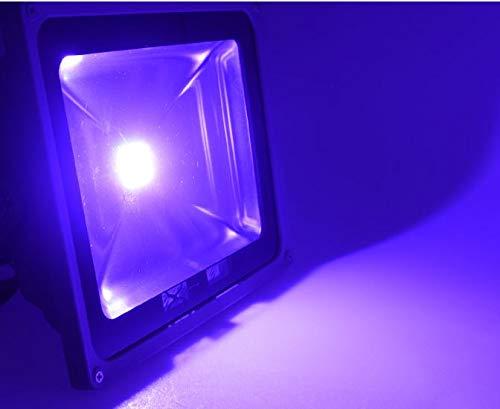 LED-Pflanzenstrahler - Pflanzenbeleuchtung zur Überwinterung für Zitruspflanzen, Mediterrane Pflanzen - Pflanzenzucht und Wachstum 56 Watt