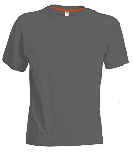 PAYPER Herren T-Shirt Rundhals-Ausschnitt Casual Fit mit Rippstrickkragen Ash