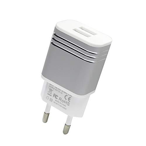 Liamostee Reise Ladeger?t Adapter 5V 2.1A Aluminiumlegierung Doppel USB Wand Ladestecker Block f¨¹r EU