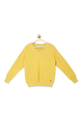 Allen Solly Yellow Sweater