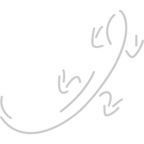 Gecko Aufkleber 005, 10 cm, silber