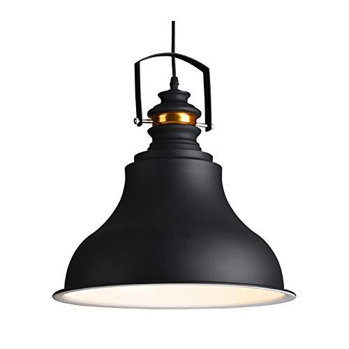 LINA Lampe de plafond rétro avec douille réglable Lampe de cage en fil métallique avec lustre rétro semi-encastré dans une lampe de plafond antique Éclairage industriel domestique intérieur