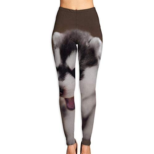 Ewtretr Yoga Pilates Hosen Fitnesshose für Damen, Cute Puppy Baby Printed Leggings Full-Length Yoga Workout Leggings Pants