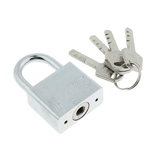SM SunniMix Metall Vorhängeschloss mit 4 Schlüssel Vorhangschloss stark, fest, rostfrei, langlebig - Silber 40x60mm