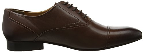 KG by Kurt Geiger Anthony, Chaussures à Lacets Homme Marron