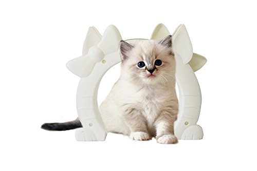 Vjoy Interior Pet Door for Large Cats or Small Dogs Freely in and out,Keeps  the Dogs Out of the Cat Room