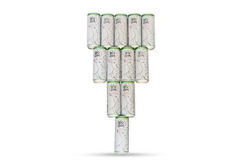 NaturalBOOM - Der weltweit erste Mental Drink, auf der Basis von GRÜNEM TEE, INGWER und anderen natürlichen Zutaten mit innovativen Eigenschaften, der Ihren GEIST NÄHRT | 12-Dosen-Paket -