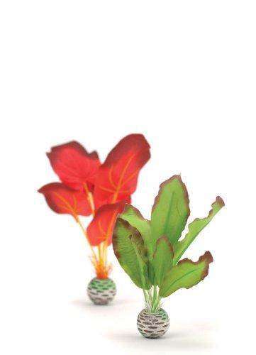 Oase biOrb Seidenpflanzen Set klein, grün und rot