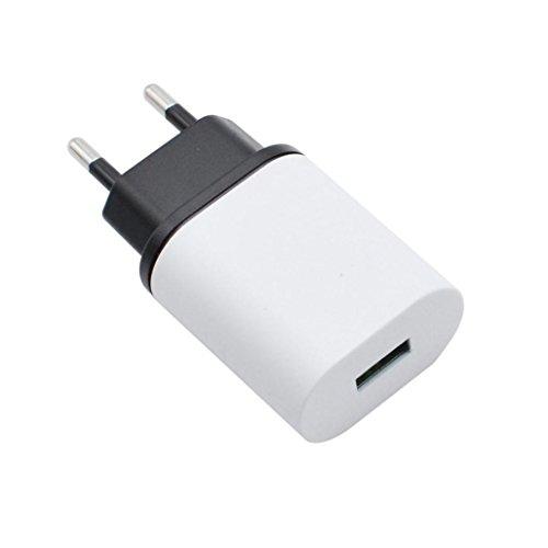 Kingko® EU Universal 2.4A 2 in 1 Port USB EU Stecker Home Reise Wandladegerät Netzteil (Schwarz)