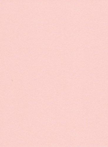 250 fogli DIN A5 salmone colorato 160g/m² Ufficio di carta. Alta qualità colorata carta pizzo per copia Inkjet Laser. Prima classe per Flyers Newsletter poster fax in arrivo avvisi importanti sistemi di memo ordine di avvertimento