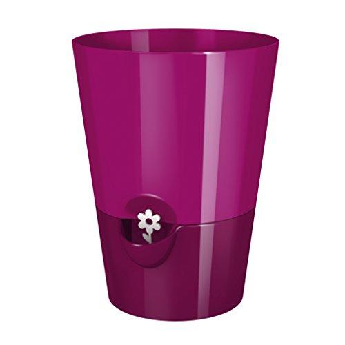 Emsa 514246 Fresh Herbs - Vaso erbe per giardino, in ABS, 13 cm, rosa