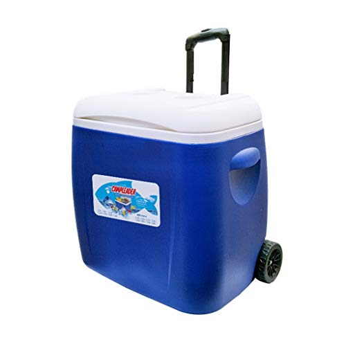 ZYLCZBX11 38L Auto Kühlschrank, Outdoor Eiskübel Kühlschrank Frischhaltung Medizin Box Haushalt Grill Angeln Box Inkubator (Color : B) -