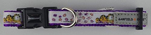 Hundehalsband - Halsband - Katzenhalsband Carfield Lila/Weiss XL - L - M - S - XS im lustigen Design (S: 21 - 36 cm) (Design Hundehalsband Einstellbar)