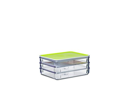 Rosti Mepal Modul 163/3 Kühlschrankbehälter für Aufschnitt SAN-Kunststoff, 19 x 15,5 x 8,8 cm, Limette, 19 x 15.5 x 8.8 cm