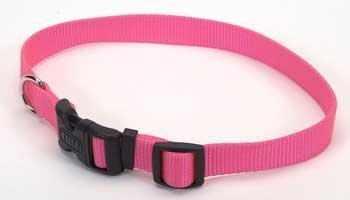 Coastal Pet Products Nyl Adj. Collar Large 1
