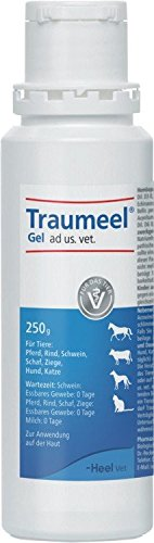 Traumeel Gel ad us. vet, 250 g Gel