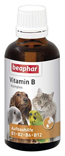 beaphar Vitamin-B-Komplex | B-Vitamine für Hunde, Katzen, Nager, Vögel | Zur Fellpflege von Haus-Tieren | Für EIN gutes Wohlbefinden | Vitamin-Tropfen 50 ml -