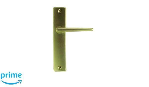 DT 2000 207010 Poign/ée de porte sur plaque Gets aluminium Champagne sans trou165