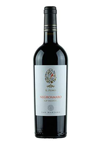 6er Paket - SUD Negroamaro 2017 - Cantine San Marzano | halbtrockener Rotwein | italienischer Wein aus Apulien | 6 x 0,75 Liter