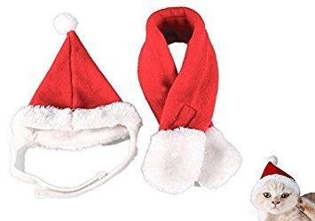 Kostüm Flanell Santa - EXOH Pet Hund Katze Weihnachten Santa Hat Schal Red Kostüm Set Schneeanzug, Flanell, Red,红色, M,46*32*5cm