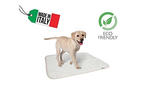 Empapador lavable muy absorbente para perros, medidas 70 x 90 cm