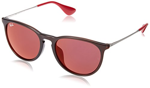 Ray-Ban Women's Erika (f) Non-Polarized Iridium Aviator Sunglasses, Brown, 53.7 mm