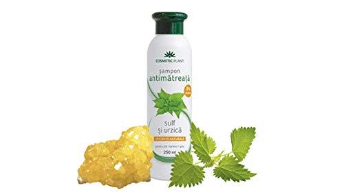Natürliche Anti-Schuppen Shampoo mit Schwefel & Brennnessel–0{ab92c18d354ae6c6030950a75e5250f1cba270490c4389f71727d047d81a3ac0} Parabene, Paraffine, Farbstoffe–Hilft behandeln und klar Schuppen itchy-scalp (250ml)