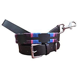 CARLOS-DIAZ-Genuine-Leather-Matching-Pair-Waxed-Embroidered-Polo-Dog-Collar-and-Lead-Set