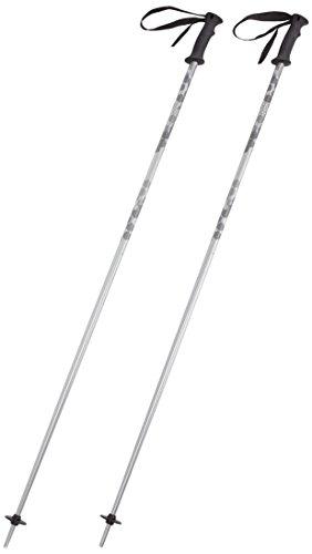 Ski Head 130 (HEAD Erwachsene Skistock Multi, Silver, 130, 381815)