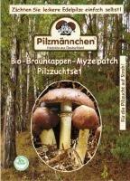 Bio Pilzzuchtset Braunkappen, Myzelpatch