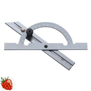 PROMAT 858710 Winkelmesser L.150mm 10-170Grad Gradbogen-D.100mm PROMAT Skala mattchrom (Skala Schienen Mit)