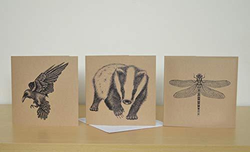 Set mit 3 Grußkarten-Satz, illustriert mit Wildtieren. Leere Geburtstagskartenpackung. Rabe, Dachs, Libelle.