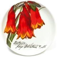 Smart Maxwell & Williams Medina Keramikuntersetzer Saidia Keramikablage Ablage 9.5 Cm Sonstige Gedeckter Tisch