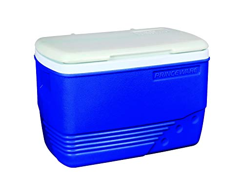 Princeware Plastic Ice Box, 30 Litre, Assorted