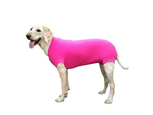 VetMedWear Neuer Anzug, Schutzkleidung Regenerationsanzug Wundverband Schutz After Dog Operation, Hot Spots Skin Disease. E-Collar Alternative Hundewunde Hund nach Operationen tragen, XXS -