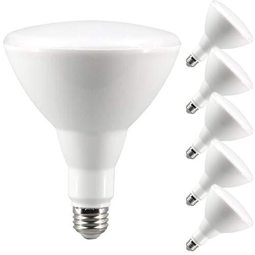 LED Hoflicht oder Scheunenlicht, LED Flächenlicht Dämmerung bis Morgendämmerung inkl. Fotozelle, 2700k Warmlight, BR30 LED Bulbs 11.0watts - Dämmerung Fotozelle