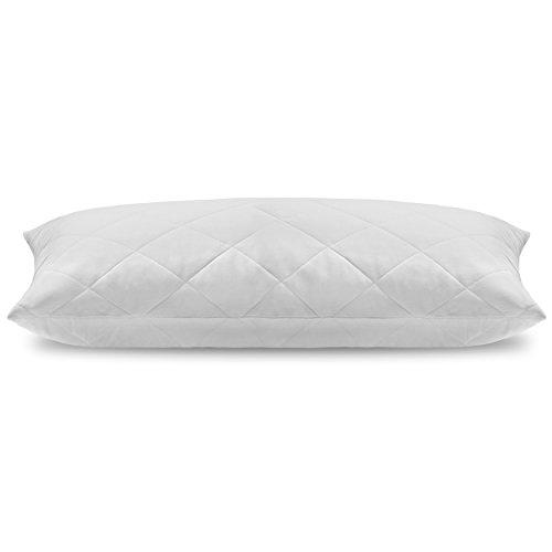 Oreiller Coussin - MÈmoire de Forme 100 % Visco-Èlastique - Ultra Confortable & Anti Allergique - LivrÈ avec 2 taies d'oreiller