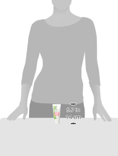 Timely – Crema de manos hidratante y regeneradora con aloe, 75 ml