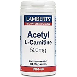 ACETIL L-CARNITINA 500MG