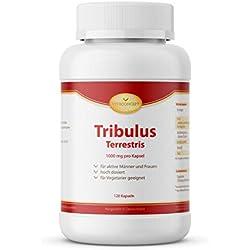 Tribulus Terrestris *1000 mg pro Kapsel *120 Kapseln- Top Dosierung* Das Orginal aus Erdburzeldorn * für Männer und Frauen - erfüllt höchste Pharma-Qualitätskriterien - Made in Germany - VITACONCEPT