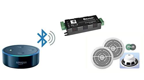Verstärker 2 x 15 W Stereo Bluetooth und Deckenlautsprecher für Amazon Alexa Echo Dot