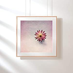 Fotografie Print Kunstdruck 12x12cm Flower rosa Frühling Quadrat