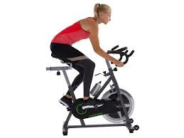 31g%2BDi%2B5DPL - Tunturi Cardio S30 Exercise Adjustable Spin Bike