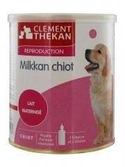 Artikelbild: Clément Thékan Milkkan Chiot
