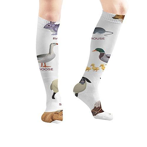beautiful& Set Farm Animals Isolated Wildlife Verschiedenes 19,7 Zoll Compression Socks Hohe Stiefel Strümpfe Langer Schlauch Für Yoga Walking Für Frauen Mann -