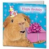 "Guinea Pig Birthday Card ""Birthday Present"""
