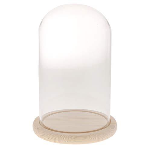 (FLAMEER Deko Glasglocke Transparente Glashaube Glassturz mit Holzteller - F)