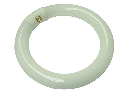 Velleman Tube fluorescent circulaire 22 W, Blanc froid